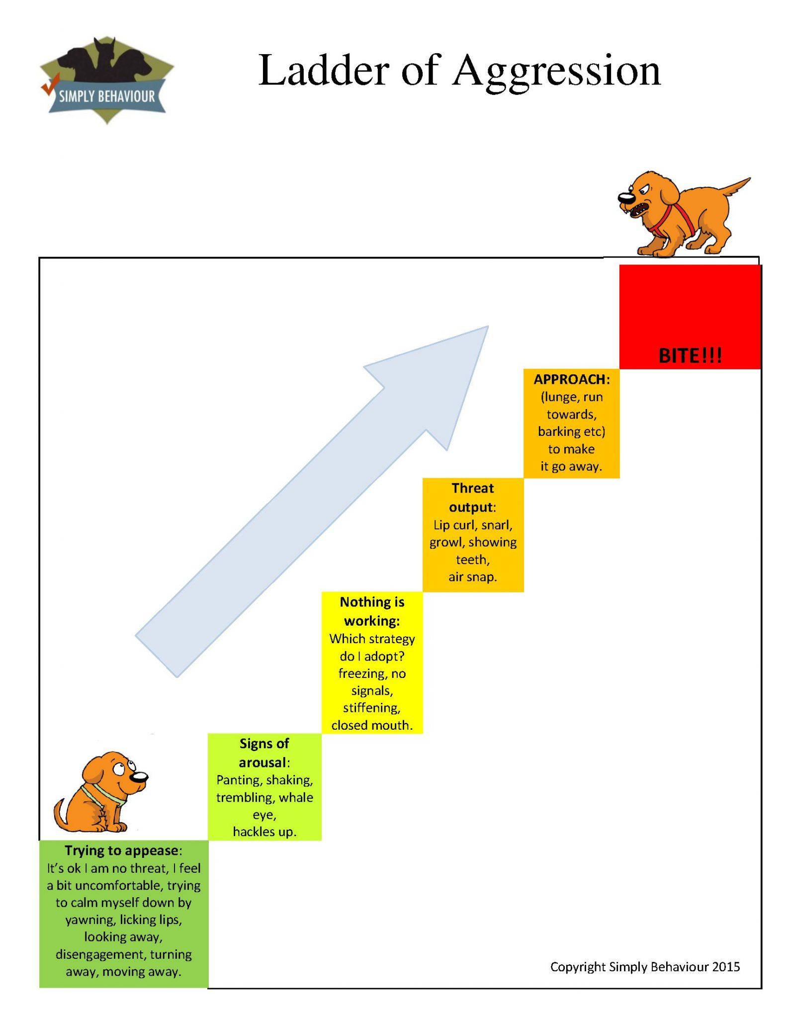 Ladder Of Aggression Settusfree